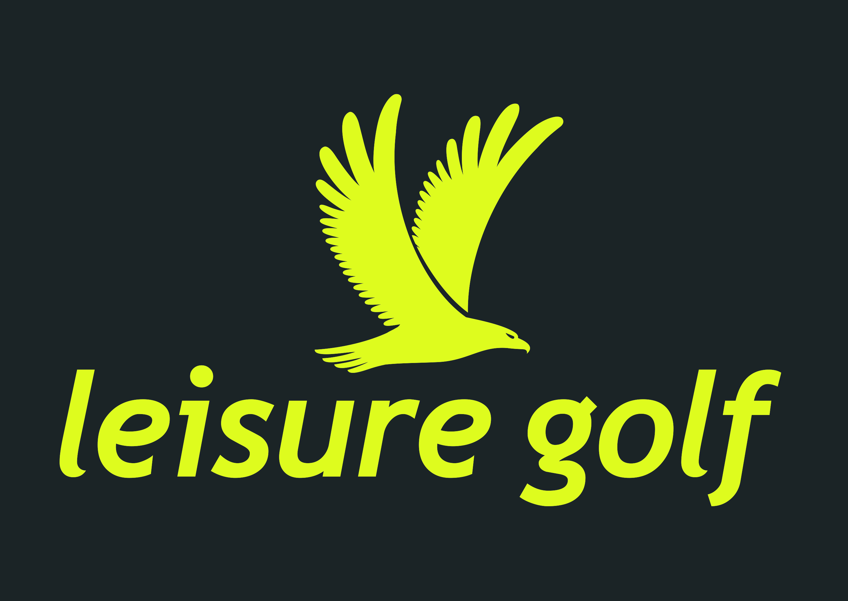 leisure golf
